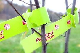 Schlaufenetiketten für Bäume und Sträucher
